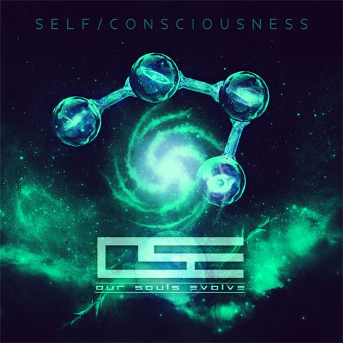 SelfConsciousness_email